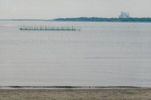 葛西海浜公園からみる干潟と対岸の様子